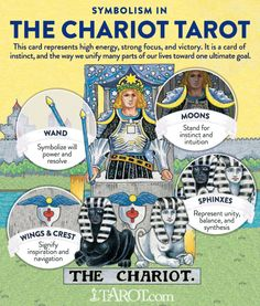 See how the symbolsim the The Chariot Tarot card artwork connects with this card's greater Tarot meaning! Major Arcana Cards, Tarot Major Arcana, The Chariot Tarot, The World Tarot, Tarot Significado, Tarot Tattoo, Tarot Cards For Beginners, Tarot Card Spreads, Tarot Astrology