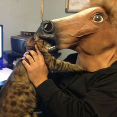 The 11 Best Ways to Wear a Horse Mask