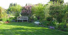 Ein schöner Rasen wertet jeden Garten auf – gleichzeitig ist er aber auch der pflegeintensivste Gartenbereich. Mit diesen Tipps bleibt Ihr grüner Teppich frei von Moos und Unkraut, wird schön sattgrün und dicht.