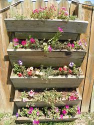 Forestine M's discussion on Hometalk. Vertical garden made from old pool deck steps - Just put a back on the steps, flipped it upside down and attached to fence Vertical Garden Diy, Vertical Planter, Vertical Gardens, Dream Garden, Home And Garden, Deck Steps, Pool Steps, Garden Pool, Herb Garden