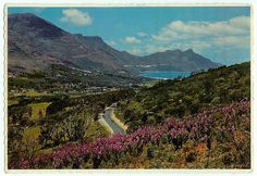 """Unfortunately, developers and idiots alike have managed to totally screwed up Houtbay and the surrounding areas, prompting a name-change to """"Cement Bay"""" Old Pictures, Old Photos, Dream City, Most Beautiful Cities, Africa Travel, Homeland, Cape Town, Wonders Of The World, Places Ive Been"""