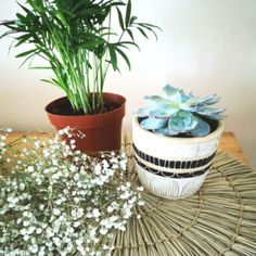 Black & White Sgraffito Planter