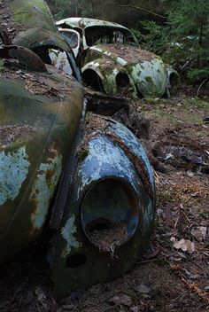 No longer loved, these VW bugs sit here abandoned. Abandoned Cars, Abandoned Places, Abandoned Vehicles, Beetle Bug, Vw Beetles, Kdf Wagen, Rust Never Sleeps, Rust In Peace, Vw Vintage
