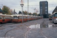 .. tracks were taken up in front of them. The trolley buses would have to