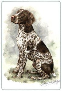 """German Shorthair Pointer Cutting Board by Canine Designs. $29.95. Heat resistant.. Made of tempered glass making it virtually unbreakable.. Scratch Resistant - imprinted on back. Hygenic and easy to clean.. Size: 8"""" x 11"""". Our beautiful, dog breed cutting boards will enhance any kitchen. They make great gifts, are made of tempered glass and measure 9"""" x 12"""". They are heat resistant, scratch resistant, virtually unbreakable, easily cleaned and dishwasher safe."""