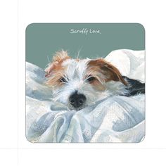 The Little Dog Scruffy Love Coaster from The Little Dog Laughed. Buy The Little Dog Scruffy Love Coaster at best price from Arcade Wales UK. Jack Russell Terriers, Jack Russell Dogs, Watercolor Illustration, Watercolor Art, Dog Lover Gifts, Dog Lovers, Cute Little Dogs, Dog Books, Watercolor Animals