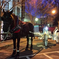 """This year, put the horse before the cart."" — Aaron W // yeahTHATgreenville"