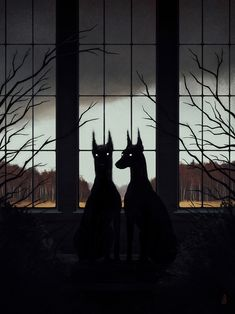"""""""Oracular Creatures And Arcane Spaces"""": Shadowy Animals Infiltrate Desolate Spaces In Illustrations y Jenna Barton Doberman Dogs, Dobermans, Bloodhound, Arte Obscura, Colossal Art, Art Et Illustration, Animal Illustrations, Wow Art, Art Graphique"""