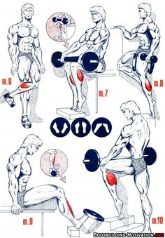 Personal Trainer - 5 Calve Workouts