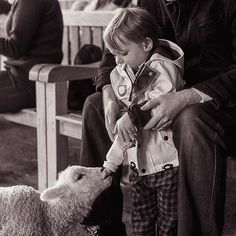 Edward loved feeding the baby lambs and goats at Farmer Gow's in Faringdon. He is still talking about the little goat called Popcorn. This photo is especially for @fravelbug - does this ring any bells? 🌼 One of the things I love about Instagram is the chance to connect with other people around the world and share moments from our everyday lives. This week I've started using a new hashtag, @littlefamiliesofig, to tag snapshots from family life - I'd love to see all your moments here too! 🌼…