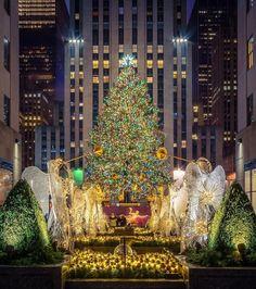 Rockefeller Center Christmas Tree by Sheffield wedding Photographer New York City Christmas, Christmas Town, Christmas Scenes, Christmas And New Year, Christmas Lights, Christmas Fairy, Xmas, Cityscape Photography, City Photography