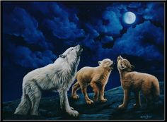 """The sky is midnight blue, the clouds part the moon appears and you hear a distant howl of the wolf. This time the sound seems different, the deep howl is accompanied by yips and uncertain stops and starts of pups. There are new pups on the mountain. You can see them here with a guardian getting to know their voices and trying to outdo each other. This painting is a popular painting for all of us animal lovers. The original hangs in my office and I get compliments year after year. "" LCurtin"