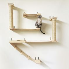 Perfect all-in-one cat complex Keep your cats from scratching your furniture by giving them some of their own Physically and mentally challenge your feline friend Sturdy, tested to hold 62 lbs per hammock, and 85 lbs per wooden piece Beautiful, large, and sleek design