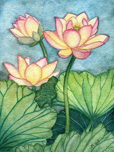 lotus flower For centuries and across many cultures, the lotus flower has been considered a sacred flower representing spiritual enlightenment and rebirth. I, too, was inspired to paint Watercolor Lotus, Lotus Painting, Fabric Painting, Watercolor Flowers, Painting & Drawing, Watercolor Paintings, Lotus Artwork, Lotus Flower Art, Lotus Flower Drawings