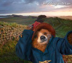 Paddington at Hadrian's Wall #paddingtonsbritain