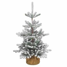 National Tree Co 3 1/2 Feet Snowy Imperial Blue Spruce Burlap... (120 CAD) ❤ liked on Polyvore featuring home, home decor and holiday decorations