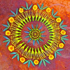 Danmala – I Mandala di Kathy Klein Flower Rangoli, Flower Mandala, Mandala Art, Flower Art, Life Flower, Land Art, Sacred Geometry Tattoo, Flower Circle, Hippie Art