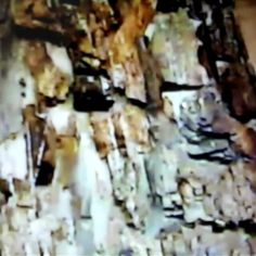 Episode: #adameve, Series: Creation, Collection: #theageofthefather Artist: #adamamos Stage: Four, #paint #background primary subjects #workinprogress #artist #artistoninstagram #newyorkart #berlinart #hongkongart #iamlove #artgallery #aimiamos #cinematic #transmedia #storytellertour