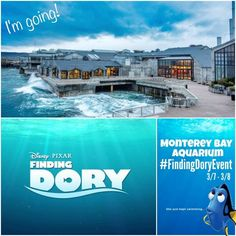5 Minutes for Mom is Headed to Monterey to Find Dory