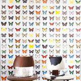 Onszelf Kids Wallpaper - Butterflies