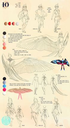 bird people Sirocco: IO Ref by Blue-Hearts Wings Drawing, Drawing Base, Wing Anatomy, Drawings With Meaning, Drawings For Boyfriend, Art Du Croquis, Bird People, Drawing People, People Drawings
