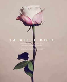 la belle rose: alberte wibrand by katrine rohrberg for elle denmark march 2013 | visual optimism; fashion editorials, shows, campaigns & more!