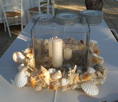 Candles with shells