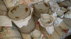 Rare Vintage Pine Tree, 17 complete place settings, with 10 extra plates, 13 extra bread plates, 25 cup and saucer sets