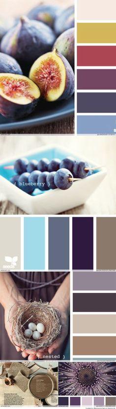 Color Palettes Inspiration- yellow, purple, fushia