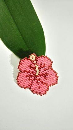 Hibiscus  perles miyuki
