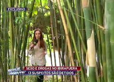 Galdino Saquarema Noticia: 13 pessoas são detidas fazendo sexo no bambuzal do Ibirapuera