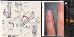 Tutorial Zbrush – Sculpting a hand – cgvilla
