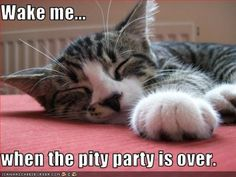 pitty parties