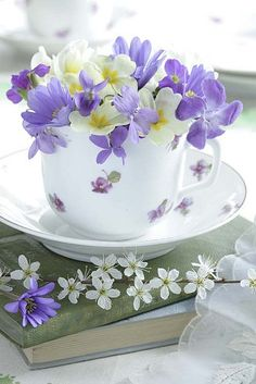 Purple pansies in a tea cup. Beautiful Bouquet Of Flowers, My Flower, Pretty Flowers, Purple Flowers, Flower Art, Bolo Mickey, Sweet Violets, Deco Floral, Container Flowers