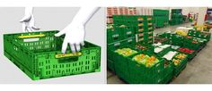 Get the Best Produce Bins to Transport Things Get the best produce bins in Australia from LOSCAM at exclusive prices. The company offers the best equipment used to store and move products through supply chains. Supply Chain, Chains, Transportation, Australia, Good Things, Humor, Store, News, Products