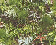 Tapete Pflanzen Wald grün weiß AS Creation 9245-13