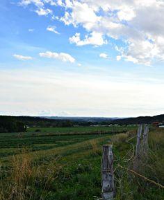Farm, Chicken, and Garden Tour: September Old Fences, September, Tours, Mountains, Garden, Travel, Garten, Viajes, Lawn And Garden