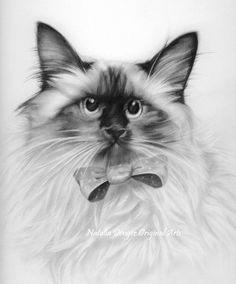 Original drawing himalayan cat pencil drawing by nataliadeng Pencil Drawings Of Girls, Bird Drawings, Realistic Drawings, Animal Drawings, Crying Girl Drawing, Himalayan Cat, Curious Cat, Black And White Drawing, Animal Paintings