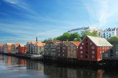 Norway travelbug