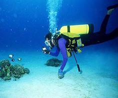 Como fazer mergulho em apneia  Veja mais em http://www.comofazer.org/outros/como-fazer-mergulho-em-apneia-2/