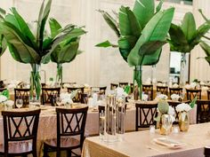 tropical inspired reception - photo by Ashley Slater Photography http://ruffledblog.com/hollywood-glam-wedding-with-an-unexpected-tropical-twist #weddingdecoration