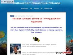 (adsbygoogle = window.adsbygoogle || []).push();     (adsbygoogle = window.adsbygoogle || []).push();  E-Book | Saltwater Aquarium Advice    http://saltwateraquariumadvice.com/e-book/ review     (adsbygoogle = window.adsbygoogle || []).push();  The Ultimate Guide To Keeping...