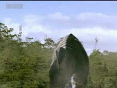 The Age of the Dinosaur Dawns - Walking With Dinosaurs - BBC