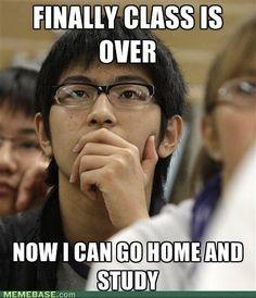 Ahhh Asians......