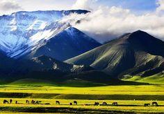 Xinjiang, in the north-west of #China, is one of the least densely populated regions in the world. via TW by  China Icons @chinaicons