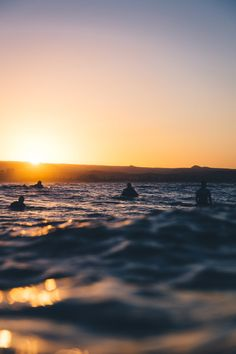 Golden Gold Coast