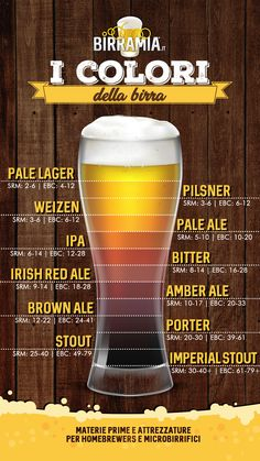All Beer, Beer Bar, Wine And Beer, Dinning Etiquette, Beer Infographic, Beer Pairing, Beer Recipes, Cocktails, Drinks