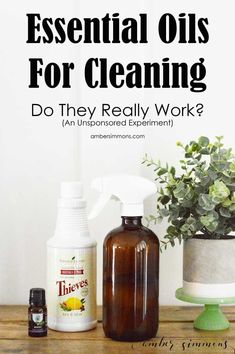 The results my home scientific test on essential oils for cleaning. Do they really work? This is an unsponsored, unbiased experiment. Deep Cleaning Tips, House Cleaning Tips, Diy Cleaning Products, Cleaning Hacks, Diy Cleaners, Cleaners Homemade, How To Remove Kitchen Cabinets, Essential Oils Cleaning, Diy Coffee Table