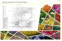 Planting Design - Cool way to incorporate images of plants with the construction plan