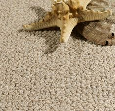 Aurora / Wall-to-wall wool carpet by Cunera